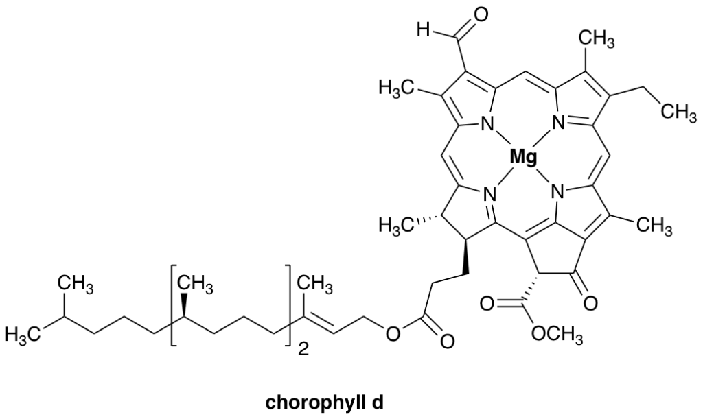 chemical structure of chlorophyll-d