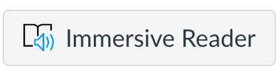 Immersive Reader icon