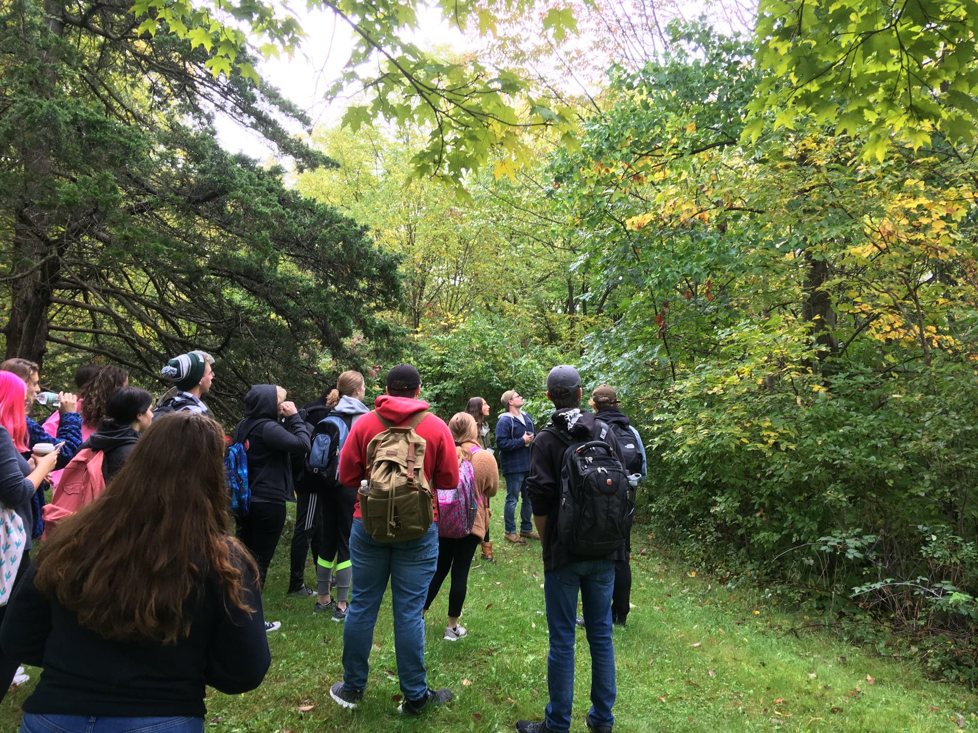 Students lead a tour of SUNY Geneseo's Spencer J. Roemer Arboretum