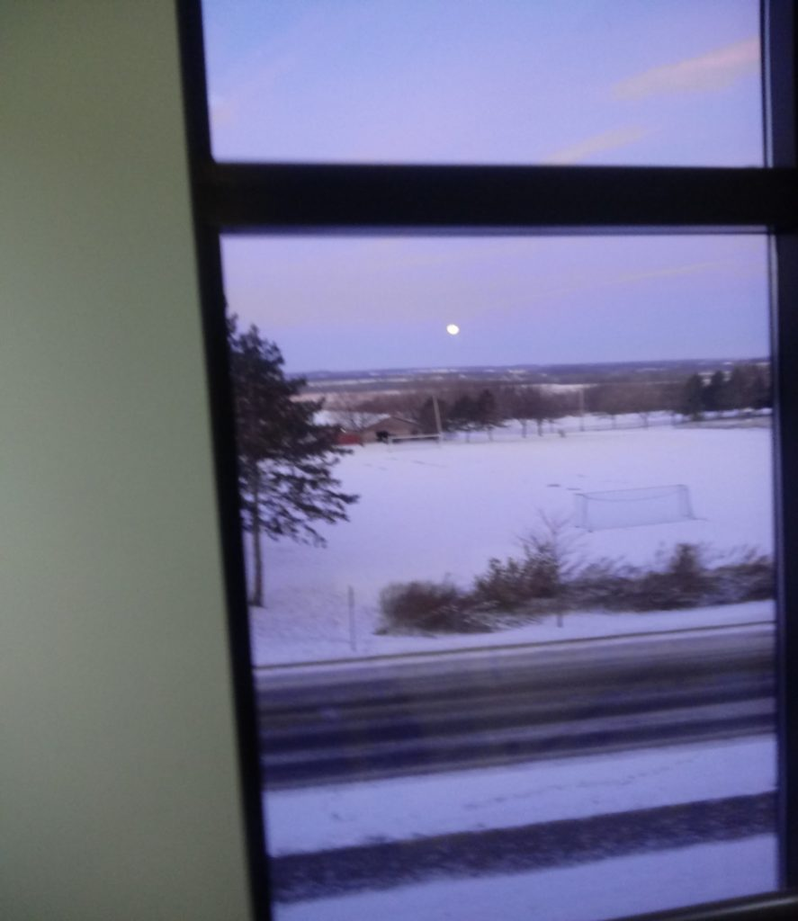 Snowy winter day, with moon above horizon